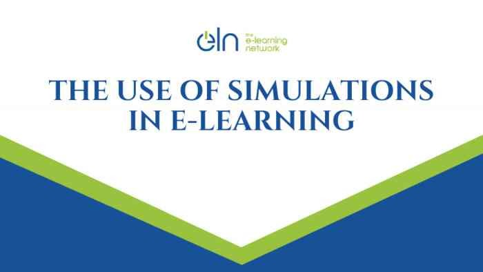 The Use of Simulations in E-Learning